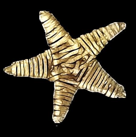 etoile-tiram-203