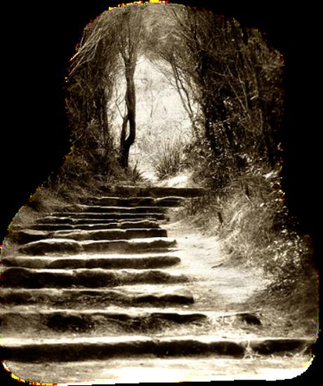 paysage-halloween-73
