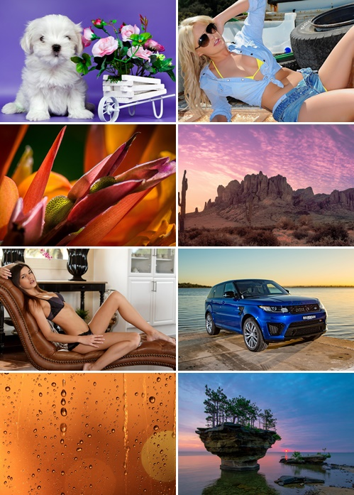 Best Mix HD Wallpapers Pack 31