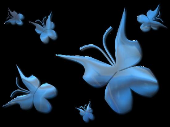 tubes_papillon_tiram_495