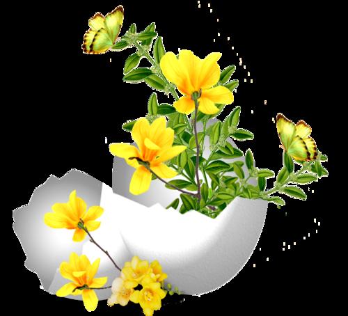 fleurs_paques_tiram_102