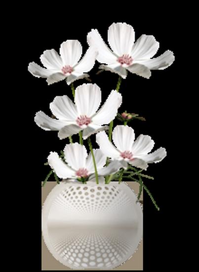 tubes_fleurs_tiram_495