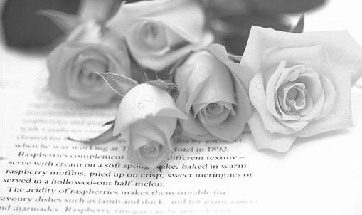 tubes_fleurs_tiram_949