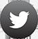 Twitter_Transparent