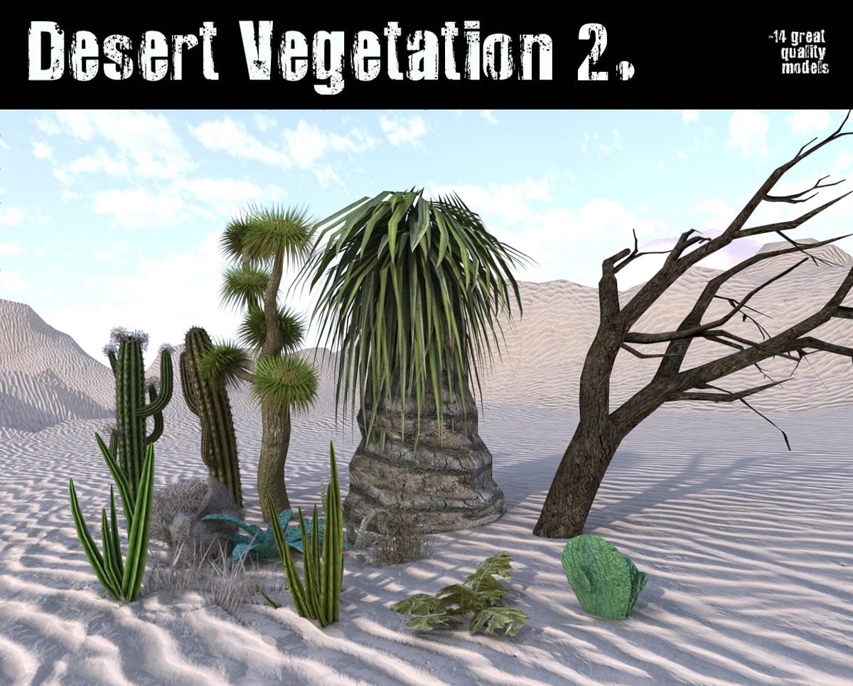 Desert Vegetation 2