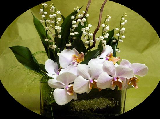tubes_fleurs_tiram_178