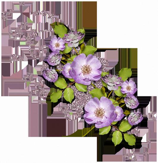 tubes_fleurs_tiram_52