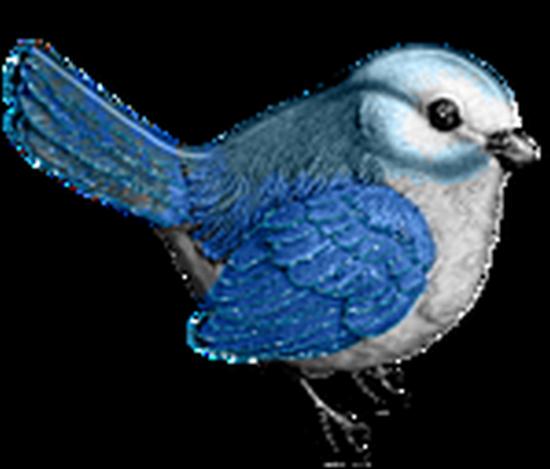 tubes_oiseaux_tiram_61