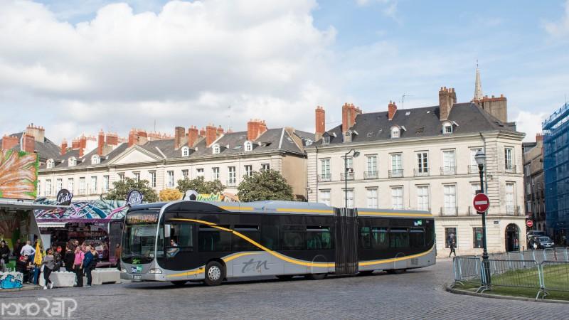 Nantes (44) - TAN - Page 3 IMG_9752