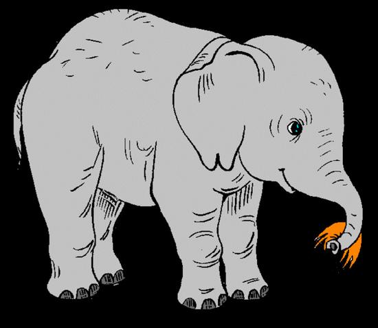 tubes_elephants_tiram_68