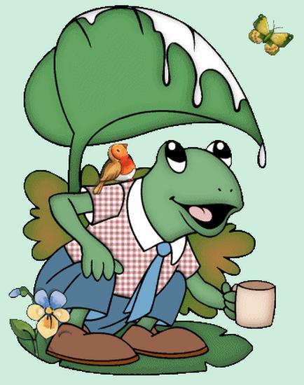 grenouille_tiram_91