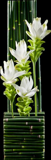 tubes_fleurs_tiram_403
