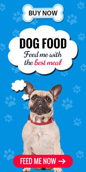 Best_dog_food_secrets
