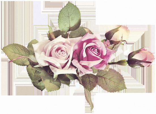 tubes_fleurs_tiram_50