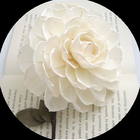 tubes_fleurs_tiram_693