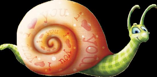 tubes_escargots_tiram_201