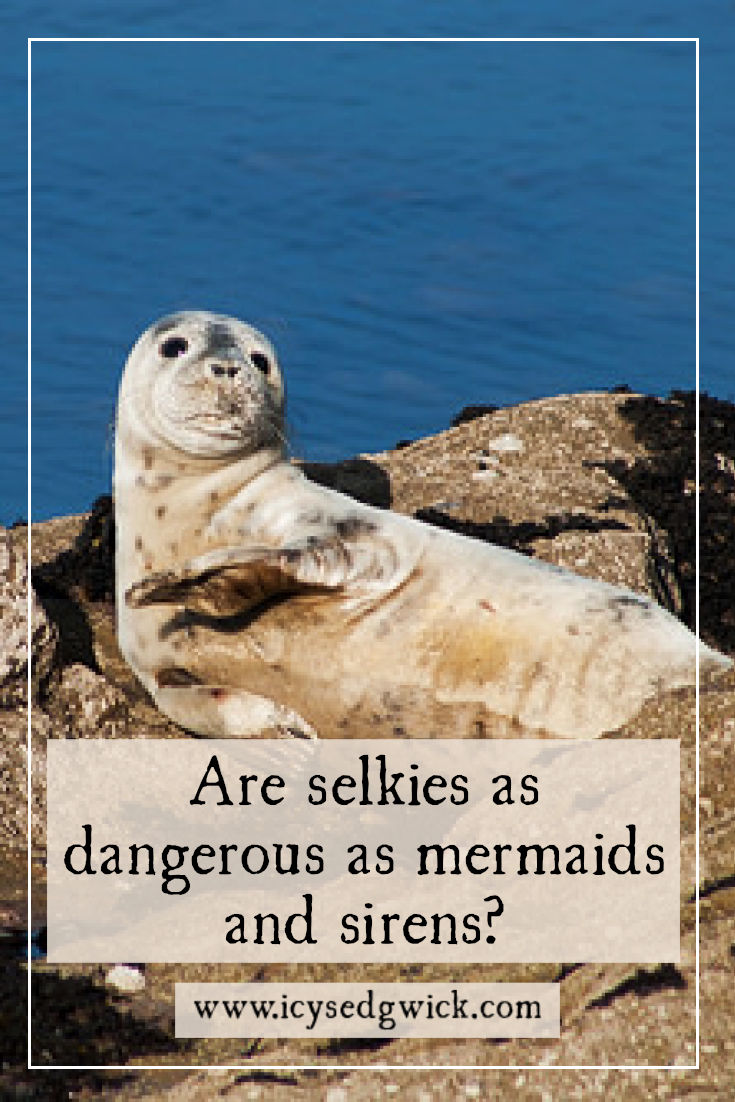 Selkies appear in the folklore of Ireland, Scotland, the Faroe Islands, and Iceland. But are they as dangerous as mermaids or sirens? Click here to find out more.