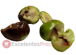 Pupa de la mosca del olivo, aceitunas picadas de mosca