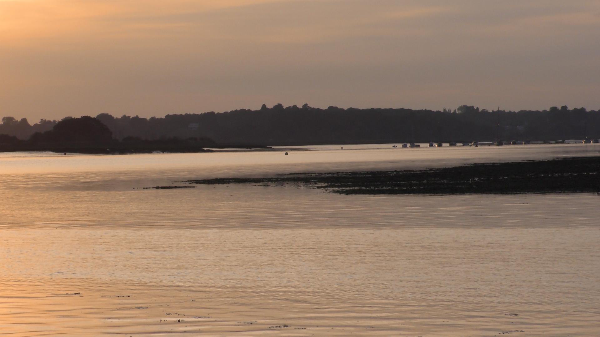 rowing_Still008