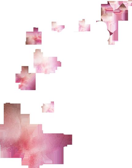 tubes_papillon_tiram_451