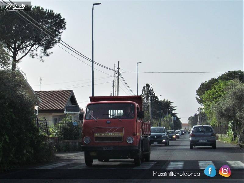 Veicoli commerciali e mezzi pesanti d'epoca o rari circolanti - Pagina 5 OM_Lupetto_25_Diesel_4_6_87cv_69_CT679298