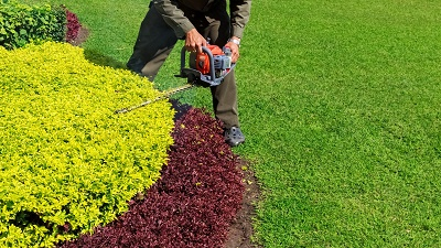 Gainesville lawn care services
