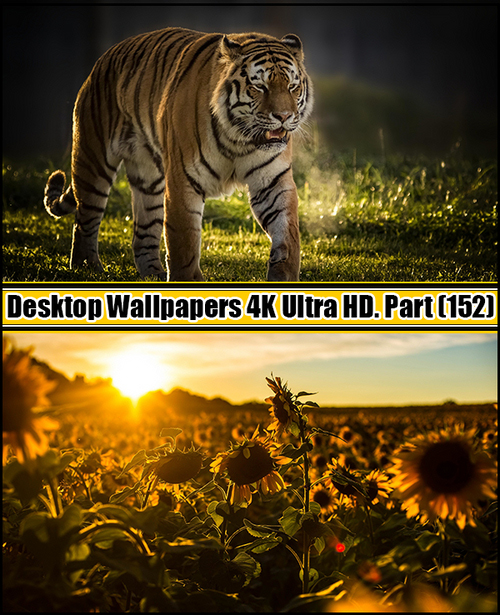 Deskop Wallpapers 4K Ultra HD. Part 152