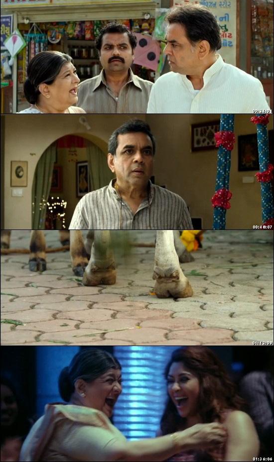 Patel Ki Punjabi Shaadi full movie hd 720p free download