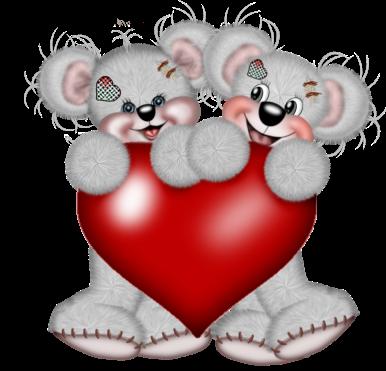 teddy_saint_valentin_tiram_215