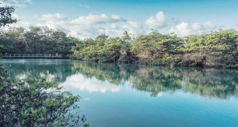 Laguna de las Ninfas - Santa Cruz