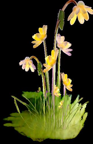 tubes_fleurs_tiram_560