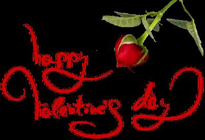 meli_melo_saint_valentin_149