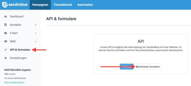 API Schlüssel SendinBlue
