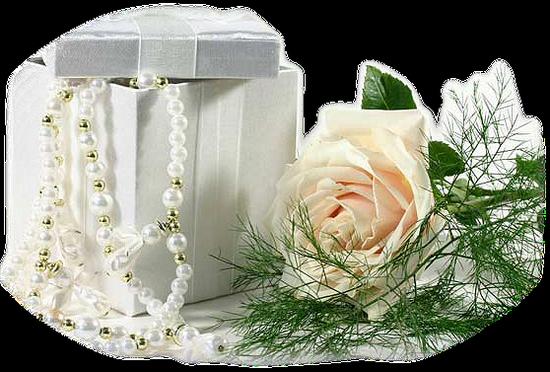 tubes_fleurs_tiram_283