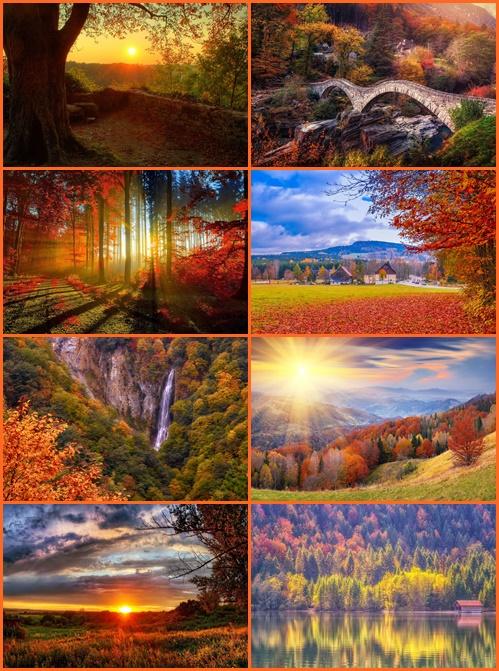Tapety - Jesień