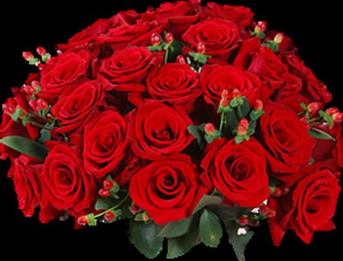 tubes_fleurs_saint_valentin_tiram_15