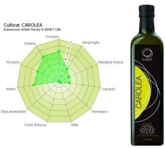 Aceite de oliva Virgen Extra Carolea, panel de cata