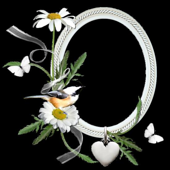 tubes_fleurs_tiram_664
