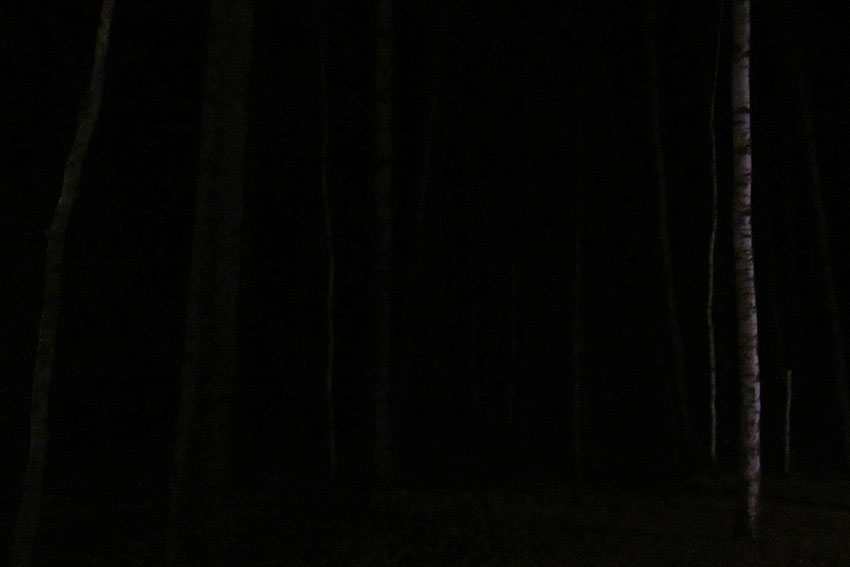 yahonty-dark-07