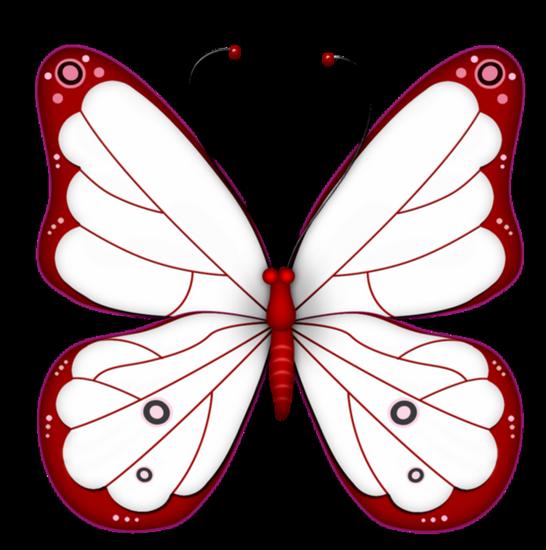 tubes_papillon_tiram_375