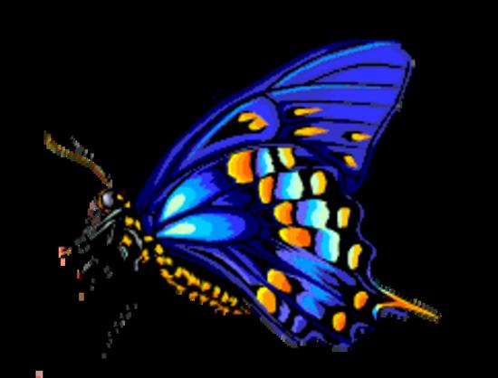 tubes_papillon_tiram_485