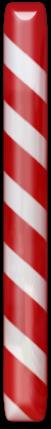 canes-noel-tiram-65
