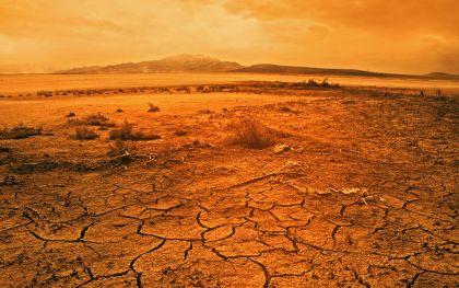 [صورة: desert.jpg]