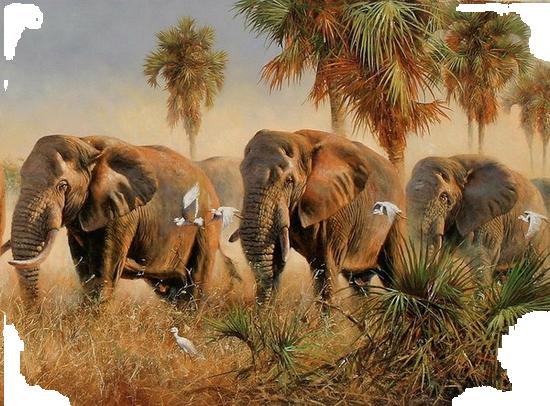 tubes_elephants_tiram_391