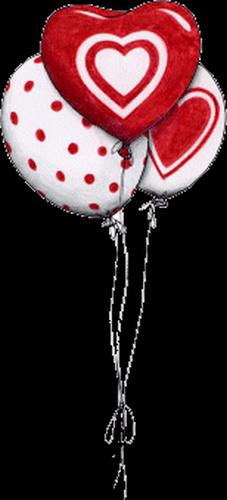 coeur_saint_valentin_tiram_273