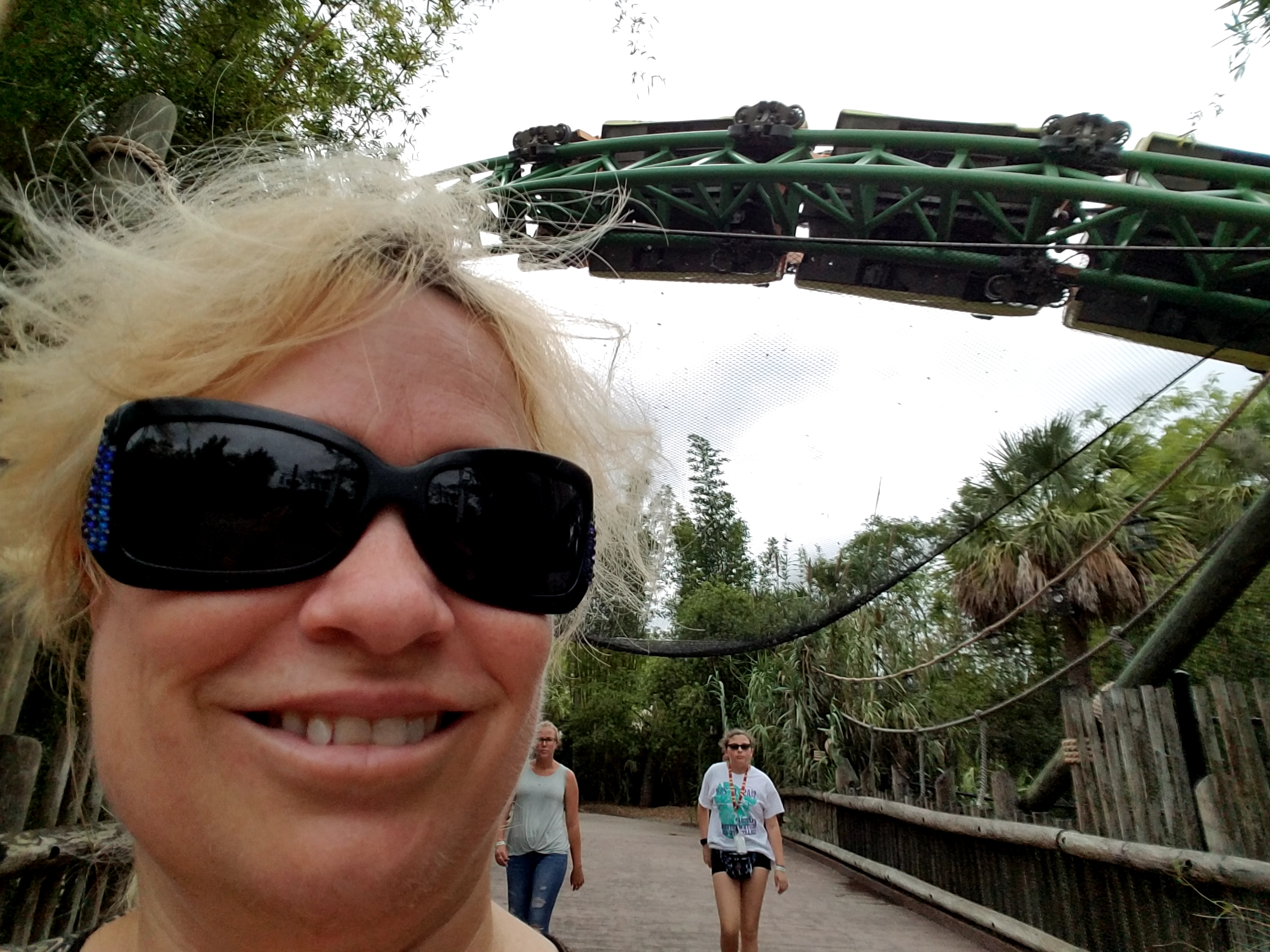 Busch Gardens For The Odd Man Out Attractiontickets Com