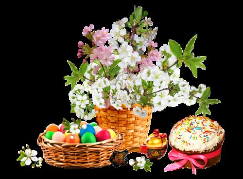 fleurs_paques_tiram_32