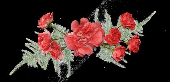 tubes_fleurs_tiram_89