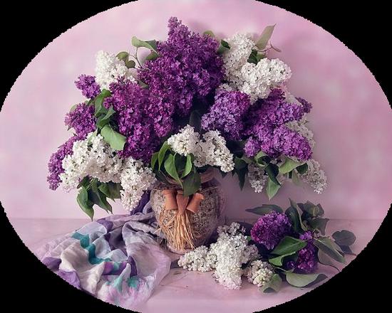 tubes_fleurs_tiram_439