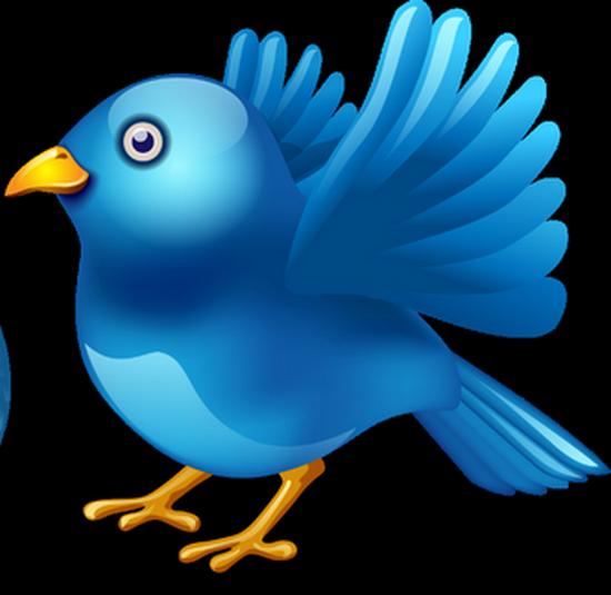 tubes_oiseaux_tiram_160